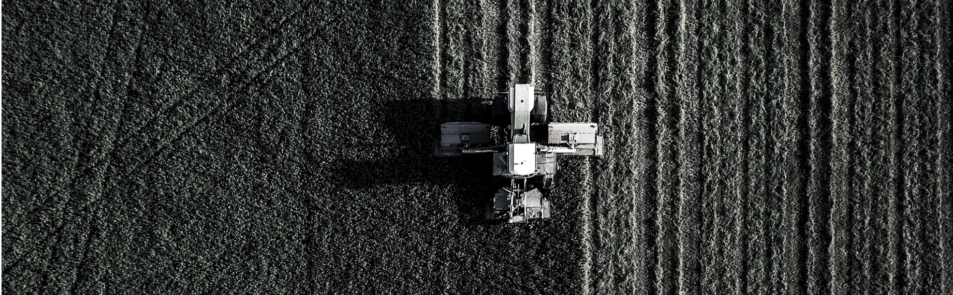 aerial shot of harvesting a field